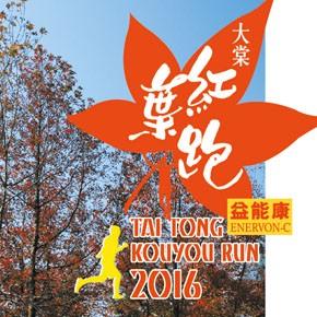益能康大棠紅葉跑2016