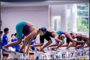 2017年香港公開游泳錦標賽