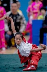 2018/2019青少年武術普及訓練計劃錦標賽