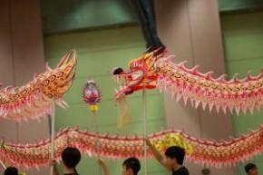 第10屆全港公開技能舞龍錦標賽