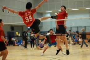 第十四屆粵、港、澳、台四地毽球埠際賽
