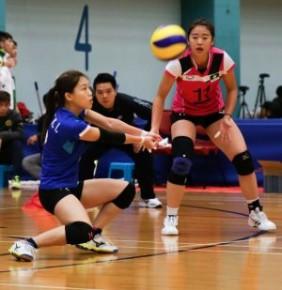 2019-2020 省港澳青年排球埠際賽