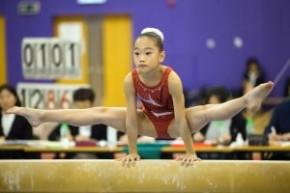 2020年香港競技體操國際邀請賽