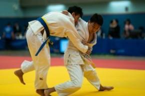 2019年度香港級組柔道錦標賽