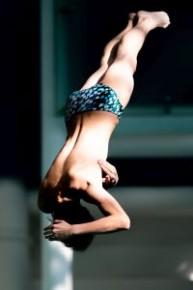 香港公開跳水錦標賽