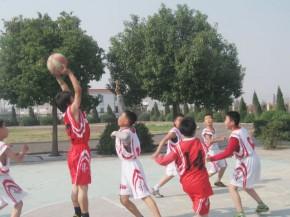 第八屆全港小學區際籃球比賽- 初賽, 2010 - 2011