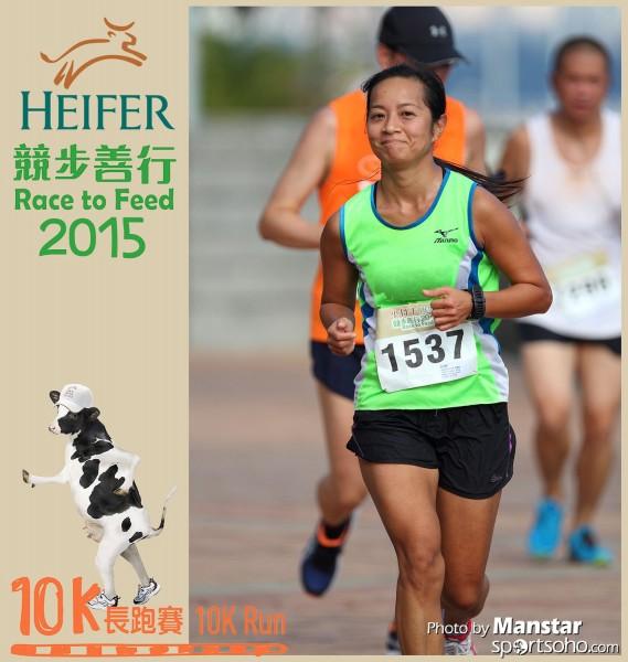 HRF_15-513F