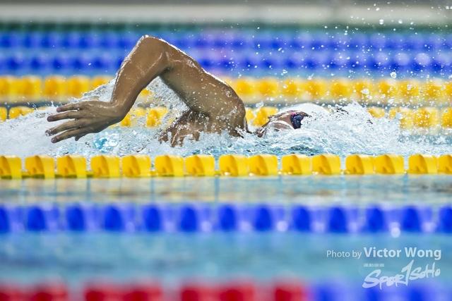 swim (85)