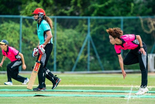Cricket-40